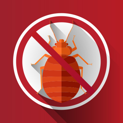 Thermal Heat Vs Chemicals Bed Bug Pros Of Florida
